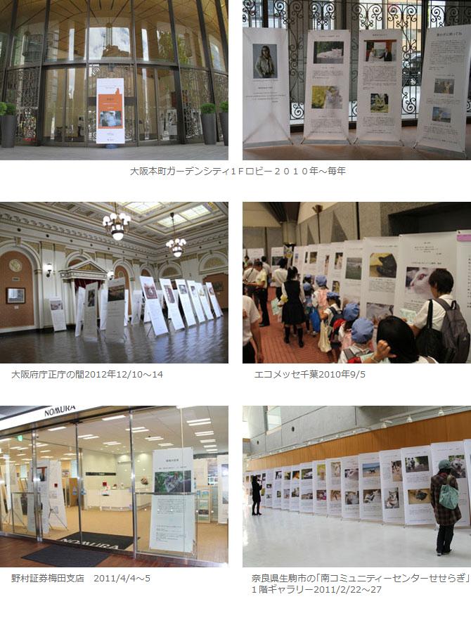 受賞作品展の様子の画像