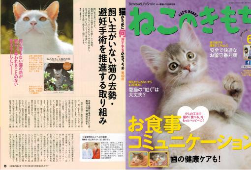 猫の気持ち 6月号
