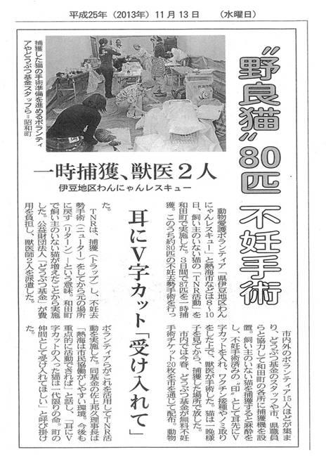 新聞記事「野良犬80匹不妊手術」