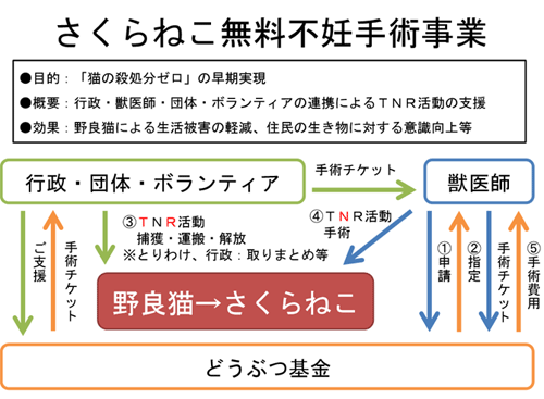 http://www.doubutukikin.or.jp/wp-content/uploads/2014/06/flow3.png